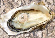 sexual health pearl whc
