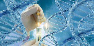 Prepregnancy genetic carrier screening