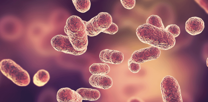 Management of bacterial vaginosis: Updated guidance from ACOG