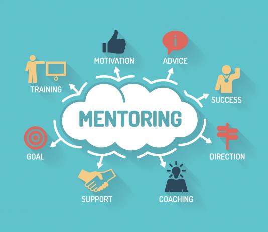 professional-development-mentoring