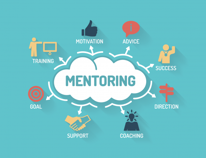 professional-development-mentoring