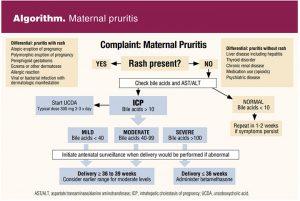 Algorithm: Maternal pruritis